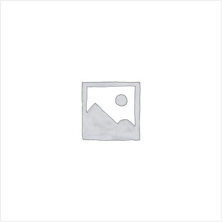 stekljannye-peregorodki